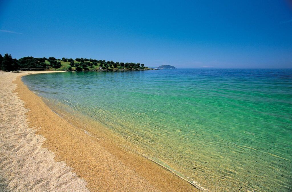 The golden sands and immaculate waters of Kohi Beach at Porto Carras, one of the best Sithonia Beaches
